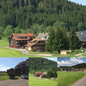 Hotel Sonnenmatte nahe Badeparadies Schwarzwald