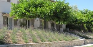 Maison dhôtes La Sidoine au Mont Ventoux