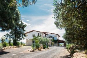 Regia Corte Home, Bed & Breakfast  Partinico - big - 12