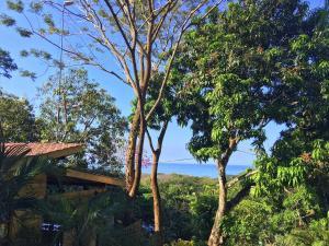 Madera Vista North Santa Teresa, Chaty v prírode  Pláž Santa Teresa - big - 34
