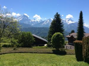 Alpine Swiss Chalet & breathtaking view - Apartment - Villars - Gryon