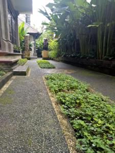 Umah Dajane Guest House, Pensionen  Ubud - big - 30