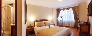 Hotel Fernando Plaza, Hotels  Pasto - big - 26