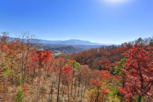 Howling Wolf - One Bedroom, Holiday homes  Sevierville - big - 25