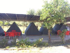 Borshi Tents - Shkalle Stenojt