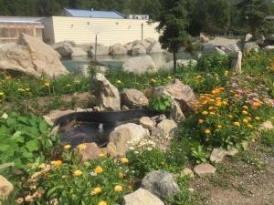 Chena Hot Springs Resort (5 of 40)