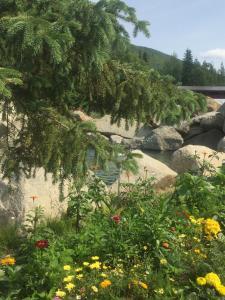 Chena Hot Springs Resort (8 of 40)