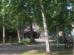 Chena Hot Springs Resort (15 of 40)