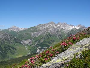 Haus Mathies - Hotel - Stuben am Arlberg