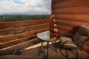 Serenity Mountain Pool Lodge - Nine Bedroom, Prázdninové domy  Sevierville - big - 17
