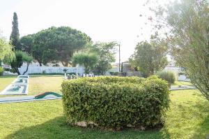 Casa Da Padeira, Affittacamere  Alcobaça - big - 158