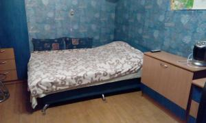 Homestay on Borodachyova - Peterhof