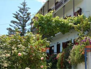 Hostels e Albergues - Hotel Erato