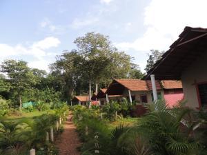 Auberges de jeunesse - Dandeli - Jungle Nest