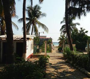 Puerto Dreams Surf House, Гостевые дома  Пуэрто-Эскондидо - big - 27