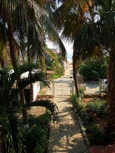 Puerto Dreams Surf House, Гостевые дома  Пуэрто-Эскондидо - big - 25