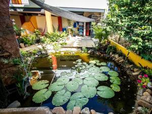 Experiencia Surf Camp, Hostels  Puerto Escondido - big - 26