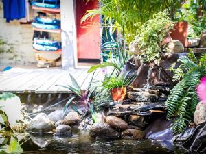 Experiencia Surf Camp, Hostels  Puerto Escondido - big - 25