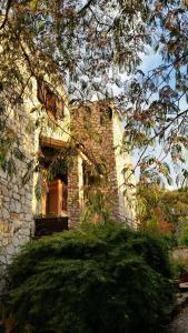 obrázek - In Villa alle porte di Roma