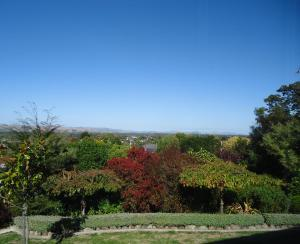 Home on the Hill, Bed and Breakfasts  Masterton - big - 18