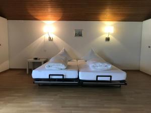 Hotel Sardona, Hotel  Elm - big - 60