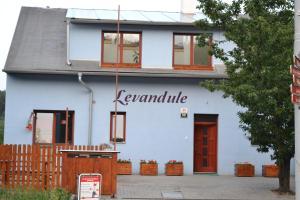 Levandule - Brno
