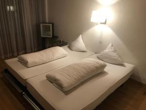 Hotel Sardona, Hotel  Elm - big - 48