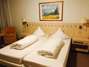 Hotel Sardona, Hotel  Elm - big - 43