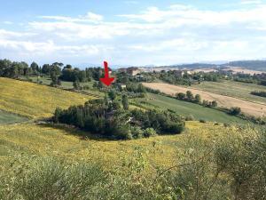 Li Dolci Colli - Accommodation - Macerata
