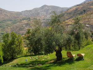 La Almunia del Valle (12 of 53)