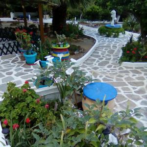 Villa Rena Andros Greece