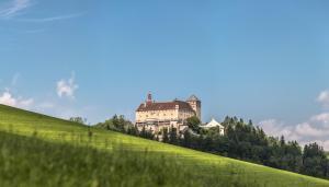 SCHLOSS KRUMBACH - Bad Schönau