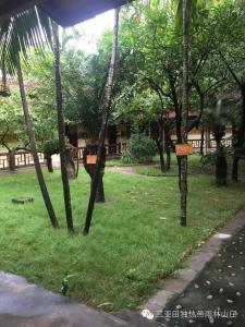 Tiandu Rainforest Resort, Курортные отели  Санья - big - 28