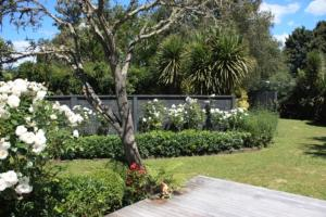 Jellicoe Cottage, Case vacanze  Greytown - big - 11