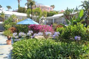 Rosedon Hotel (30 of 56)