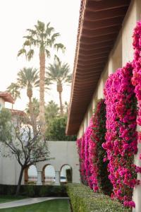 Miramonte Indian Wells Resort & Spa, Curio Collection, Resorts  Indian Wells - big - 47