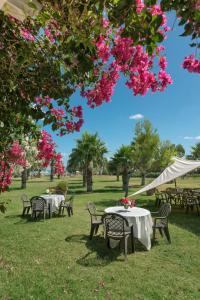 Acacia Resort Parco Dei Leoni, Rezorty  Campofelice di Roccella - big - 32