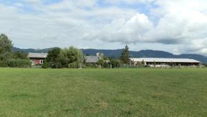 Steigmatt Bauernhof- Erlebnis