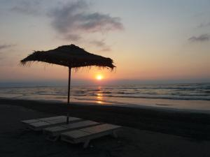 La Bella Vita, Apartments  Mamaia - big - 8