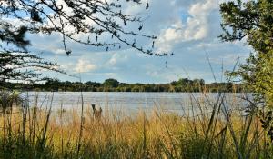 Thebe River safaris, Hotely  Kasane - big - 17