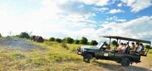 Thebe River safaris, Hotely  Kasane - big - 23
