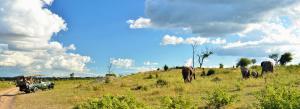 Thebe River safaris, Hotely  Kasane - big - 22