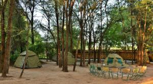 Thebe River safaris, Hotely  Kasane - big - 32