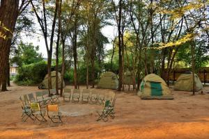 Thebe River safaris, Hotely  Kasane - big - 31