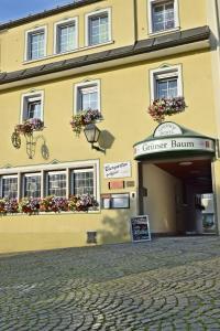 Hotel Grüner Baum - Berg