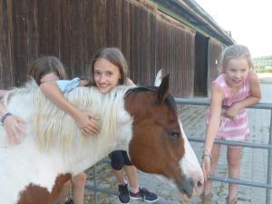 Espi-Stables Ferienhof Esterhammer, Farm stays  Liebenau - big - 42