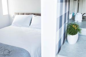 Słoneczna Komfortowe Pokoje i Apartamenty