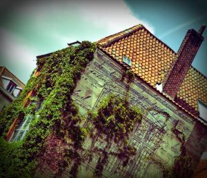 Hostel Lybeer Bruges (19 of 43)