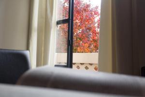 Rosario Suites, Ferienwohnungen  Rosario - big - 37