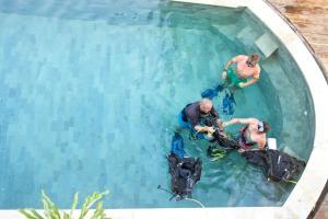 Dragon Dive Komodo Hostel, Hostely  Labuan Bajo - big - 66